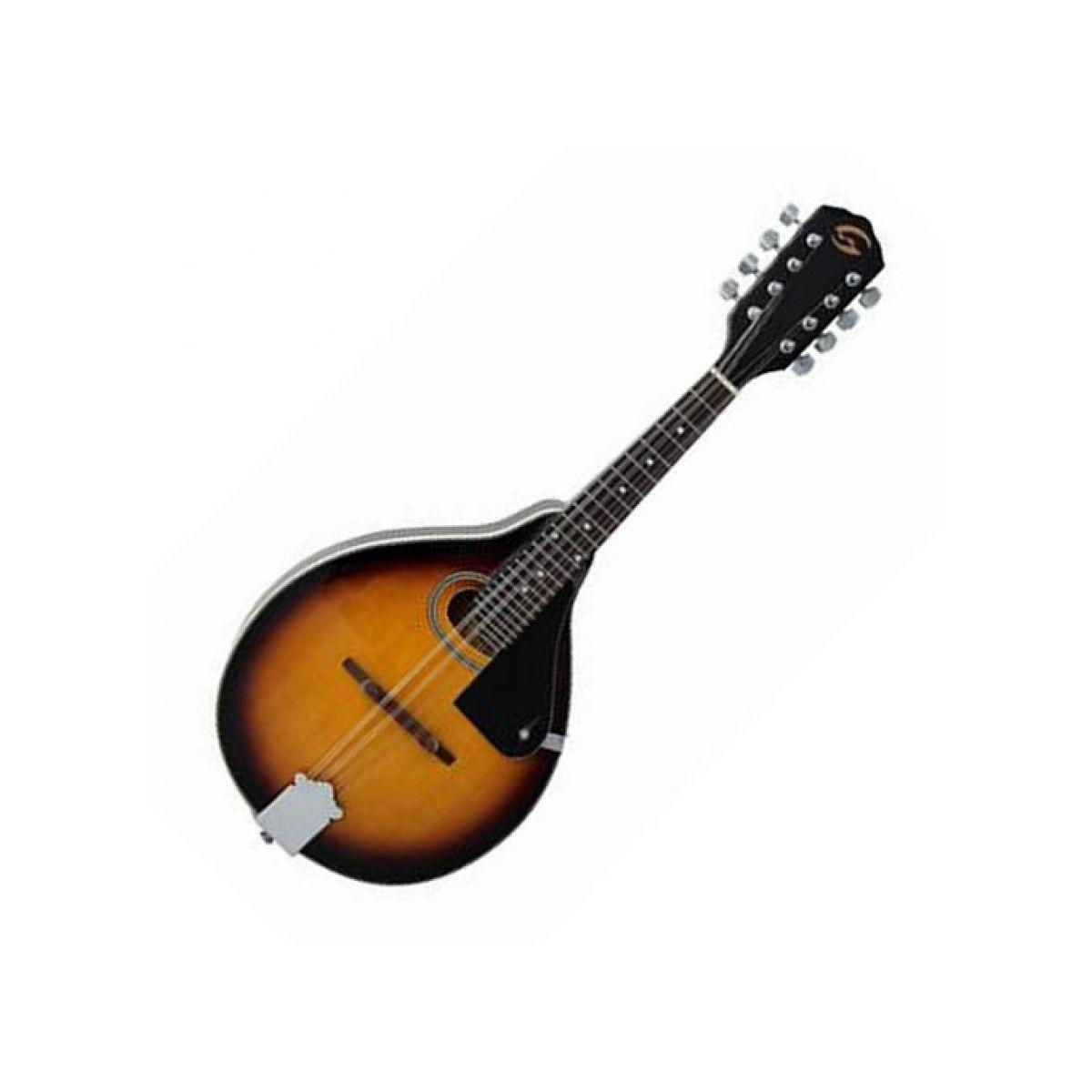 Soundsation mandolino piatto ma-20 vs con borsa